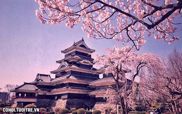 những điều không nên làm khi du lịch Nhật