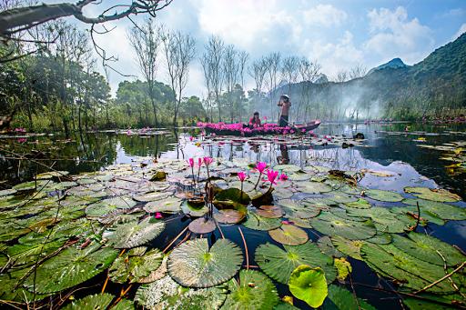 Thăm Suối Yến - Chùa Hương mùa nước tím rực rỡ cả vùng trời