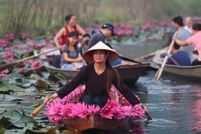Khám phá Suối Yến - Chùa Hương mùa súng nở hoa