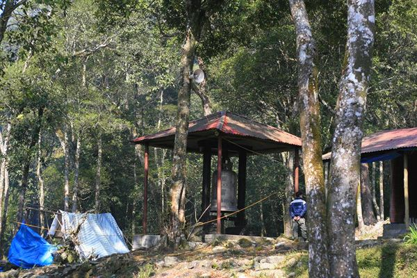 Chuyến đi du lịch chùa Địa Ngục ẩn sâu qua rừng ma, ao dứa