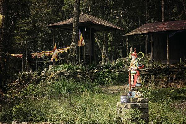 Chuyến đi trải nghiệm chùa Địa Ngục nằm sâu trên rừng ma, ao dứa